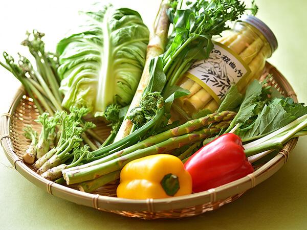 地元の新鮮な高原野菜と魚カレンダー〈春〉